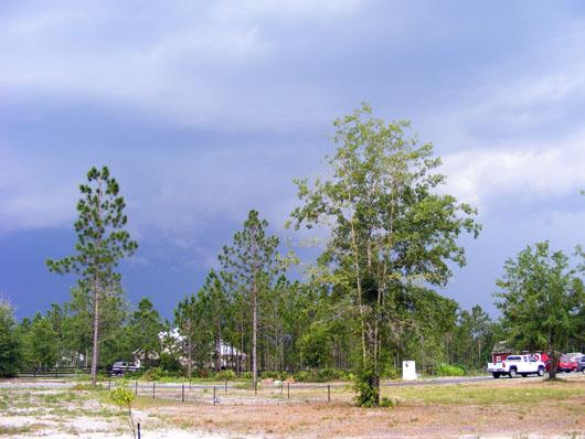 Storm June 1 2008